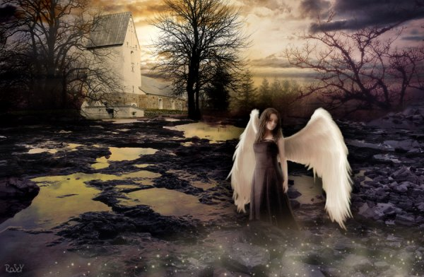 Angel-of-the-Dawn